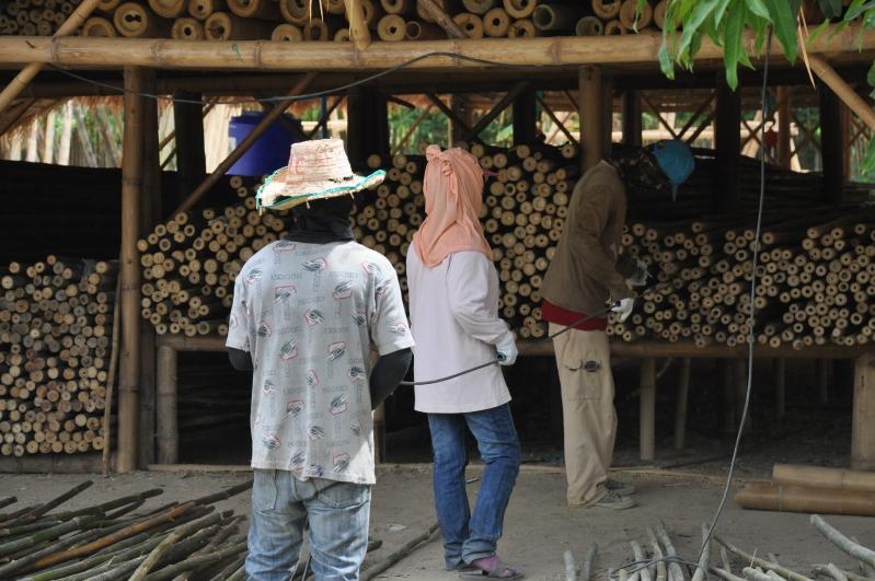 Bamboo Treatment