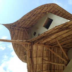 Bamboo Architecture - Bamboo Roofs At Ban Ploen