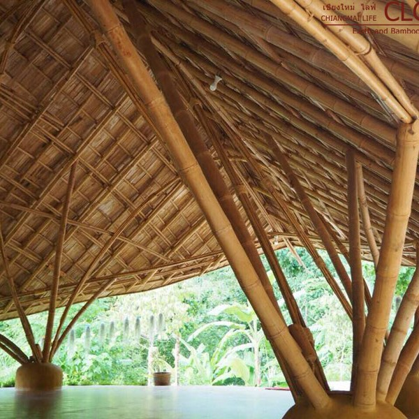 Earth & Bamboo Architecture