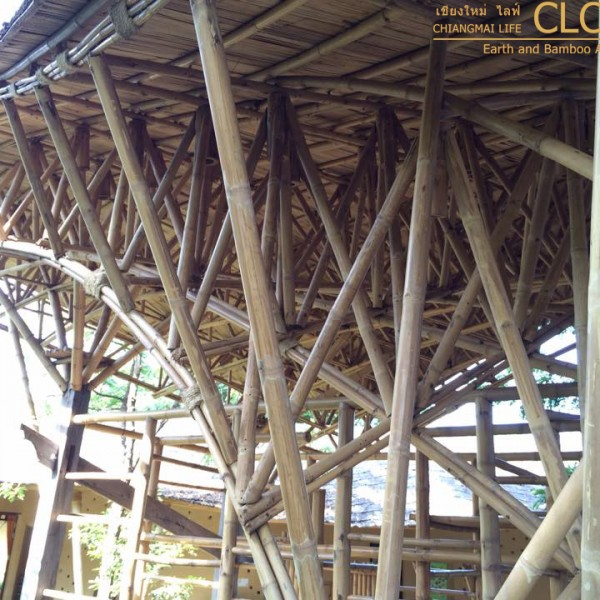 Bamboo Space Frame