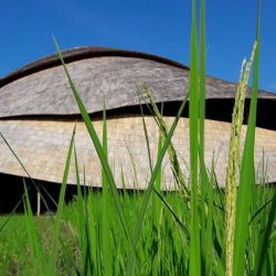 Bamboo Sports Hall Panyaden Bamboo Architecture By CLA
