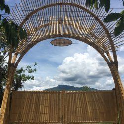 Bamboo Sala For Winetasting Bamboo Architecture By CLA (9)